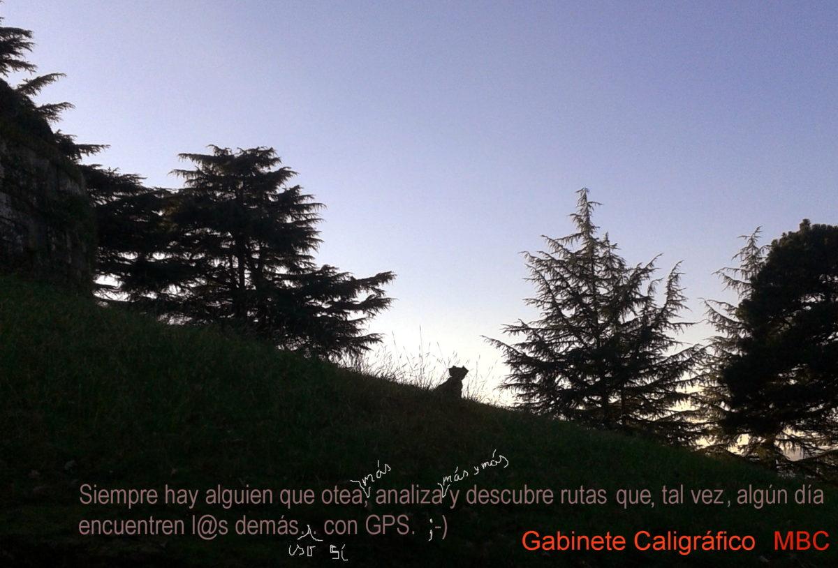Palestrantes (meditatio brevis)